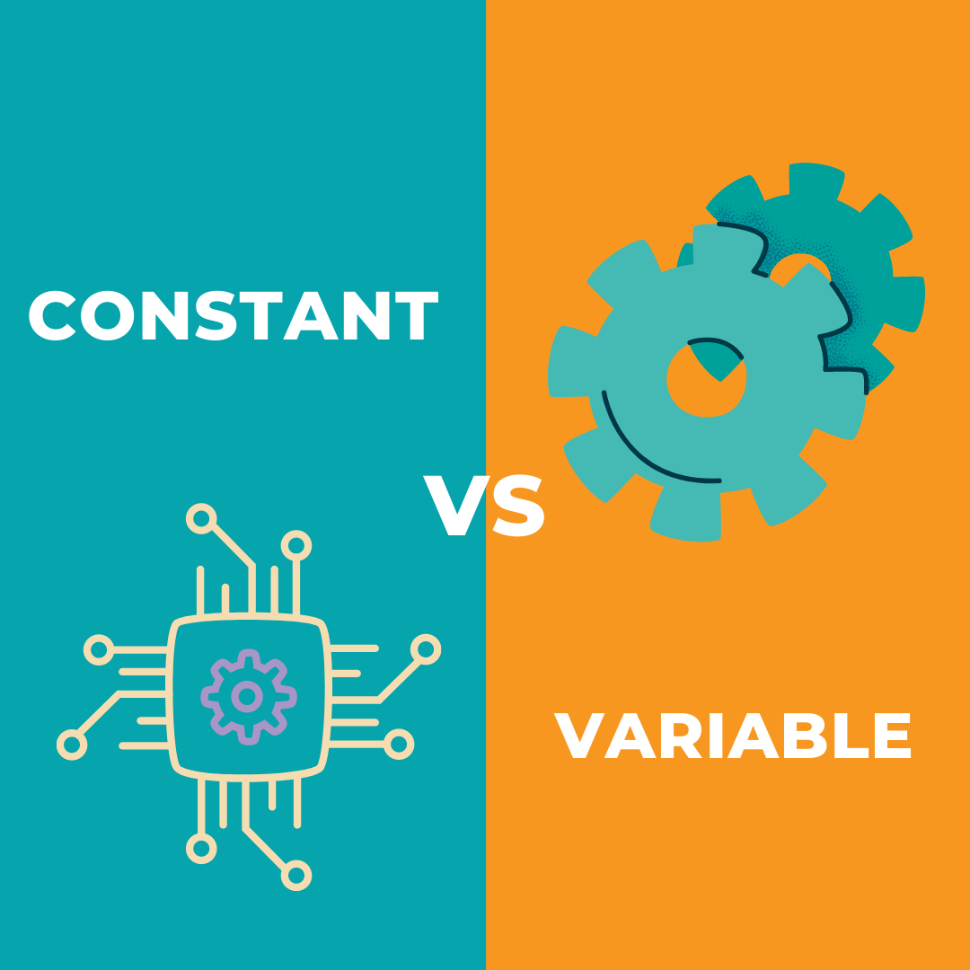 differnce between the constant and variable in java